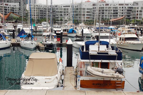 Yatches at Marina @Keppel Bay