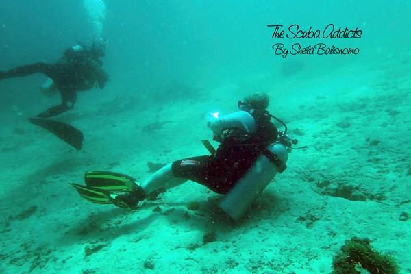 the scuba addicts