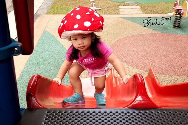 Sabi climbing the slide