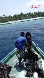 Heading to Kurumba Island