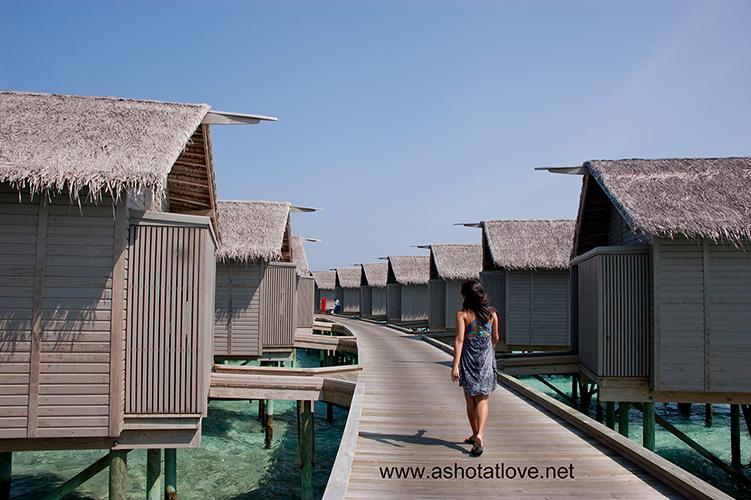 Centara RasFushi Resort